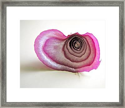 Framed Print featuring the photograph The Onion Remnant by Sean Griffin