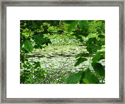 The Opening Framed Print by James McAdams