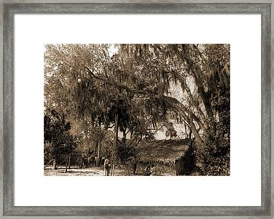 The Orange Pickers, Ormond, Agricultural Laborers, Orange Framed Print by Litz Collection