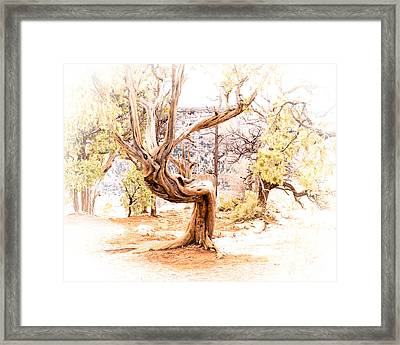 The Orator Framed Print by Arne Hansen