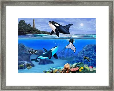 The Orca Family Framed Print by Glenn Holbrook