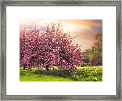 The Orchard Framed Print by Jessica Jenney