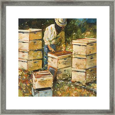 The Organization Of Bees Framed Print