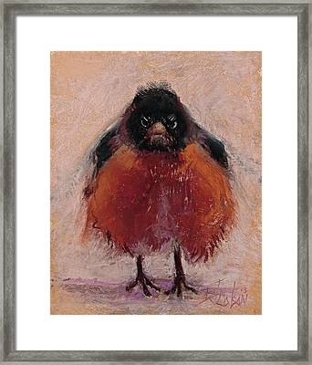 The Original Angry Bird Framed Print by Billie Colson