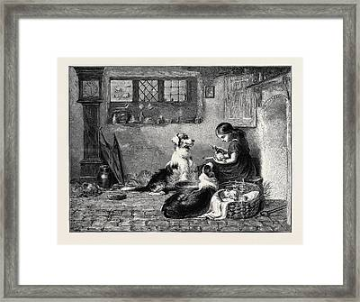The Orphans, A Drawing In The Dudley Gallery Framed Print by Riviere, Briton (1840-1920), English