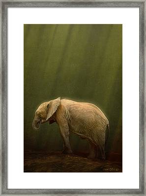 The Orphin Framed Print