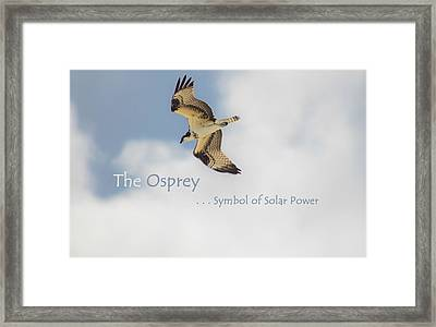 Framed Print featuring the photograph The Osprey by DigiArt Diaries by Vicky B Fuller