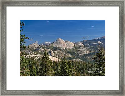 The Other Side Of The Domes Framed Print