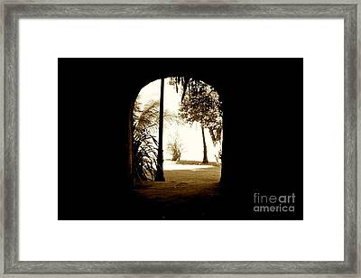 The Other Side Framed Print by Will Cardoso
