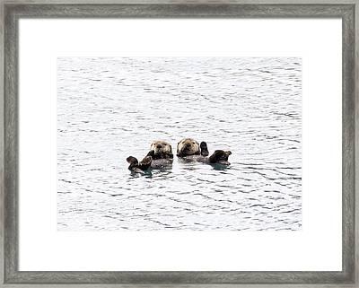 The Otters Say Hello Framed Print by Saya Studios