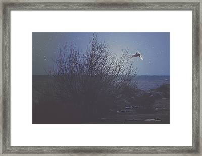 The Owl Framed Print by Carrie Ann Grippo-Pike