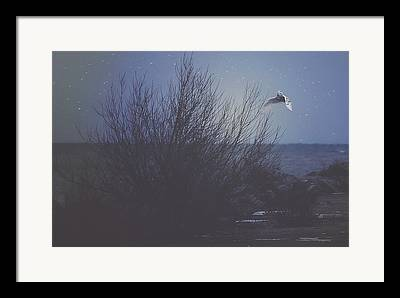 Snowy Night Night Photographs Framed Prints