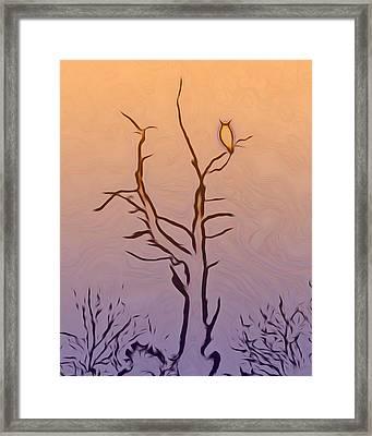The Owl Digital Art Framed Print by Ernie Echols