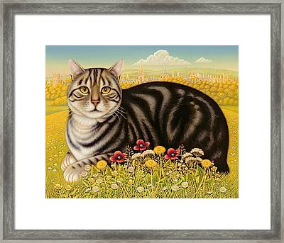 The Oxford Cat Framed Print by Frances Broomfield