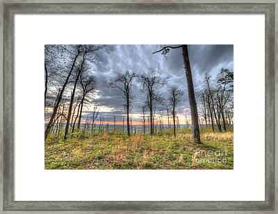 The Ozark National Forest Framed Print by Twenty Two North Photography