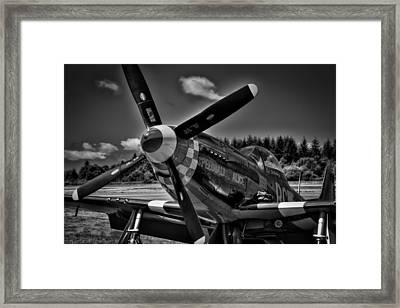 The P-51 Speedball Alice Mustang Framed Print by David Patterson