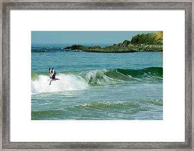 The Pacific Flyer Framed Print