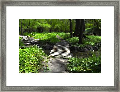 The Painted Forest From The Series The Imprint Of Man In Nature Framed Print