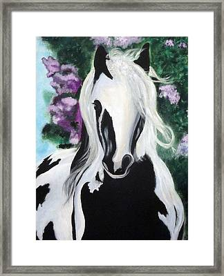 The Painted One Framed Print