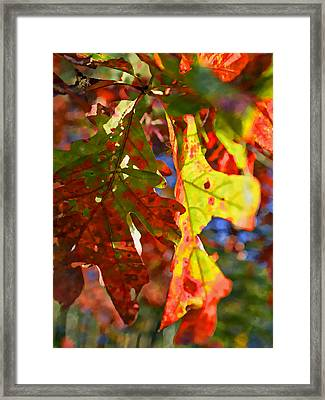 The Painted Season Framed Print by Susan Leggett