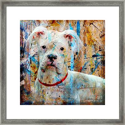 The Painter's Dog Framed Print by Judy Wood