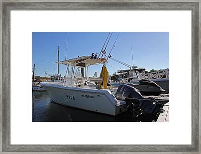 The Pala Framed Print by Juergen Roth