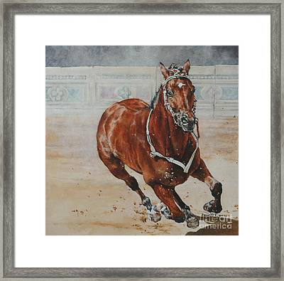 The Palio Framed Print by David McEwen