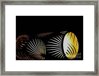 The Palm Frond Light Framed Print