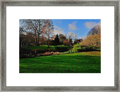 Framed Print featuring the photograph The Park And The Autumn Sun by Marwan Khoury
