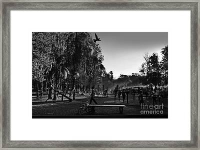 The Park At Dusk - Sao Paulo Framed Print