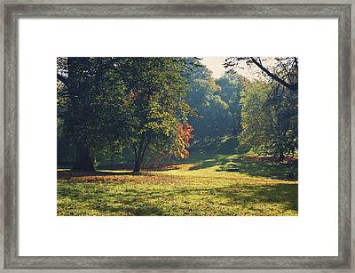 The Park In Autumn Framed Print