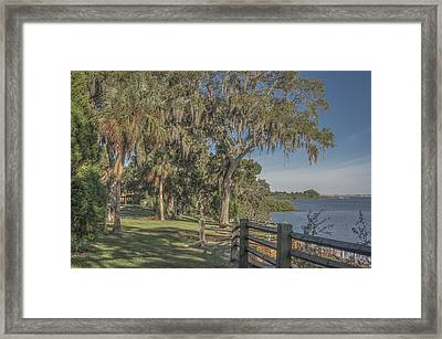 Framed Print featuring the photograph The Park by Jane Luxton