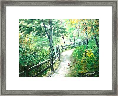 The Park Trail - Mill Creek Park Framed Print