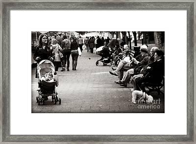 The Paseo Framed Print by Miriam Danar