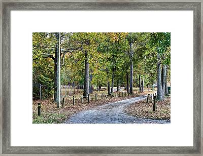 The Path Framed Print by Carolyn Ricks