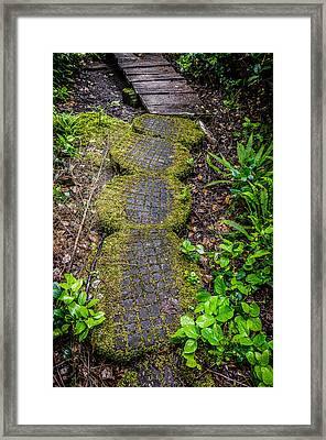 The Path Created Framed Print by Roxy Hurtubise