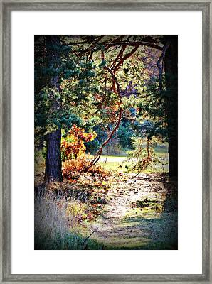 The Path Framed Print by Dawdy Imagery