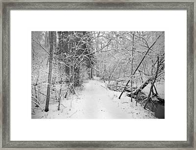 The Path Not Taken Framed Print