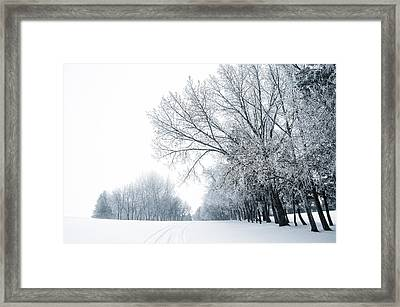 The Path Of A Wandering Soul Framed Print