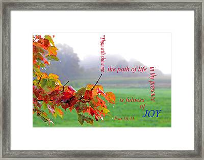 The Path Of Life Framed Print by Paul Miller