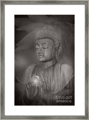 The Path Of Peace Framed Print by Sharon Mau
