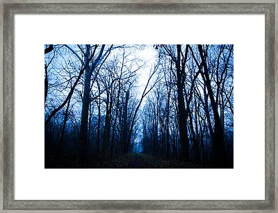 The Path Framed Print by Off The Beaten Path Photography - Andrew Alexander