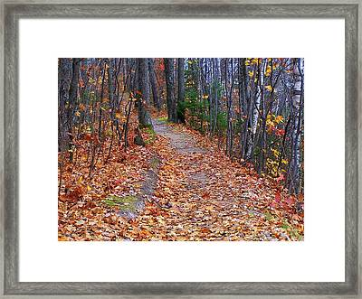 The Path On The Ridge Framed Print