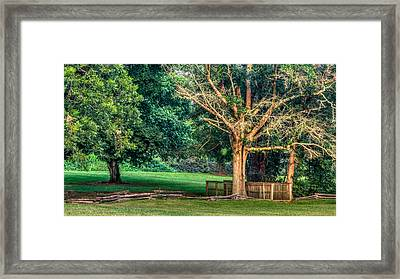 The Path Framed Print by Rob Sellers