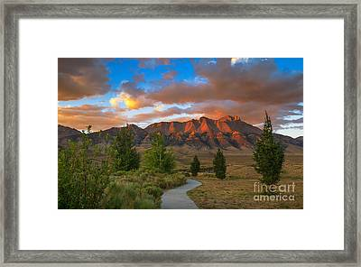 The Path To Beauty Framed Print by Robert Bales