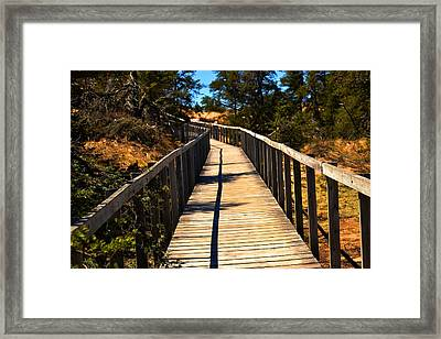 The Path Framed Print by Valarie Davis