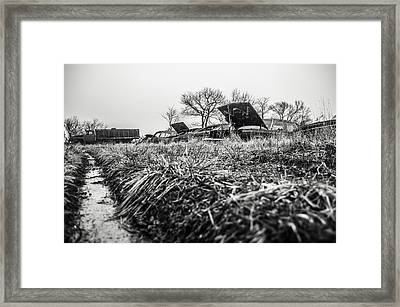 The Paths I Take  Framed Print by Off The Beaten Path Photography - Andrew Alexander