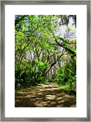 The Paths I Wander Framed Print by e9Art