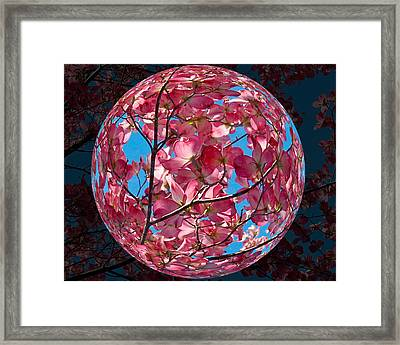 The Peach Tree Sphere Framed Print