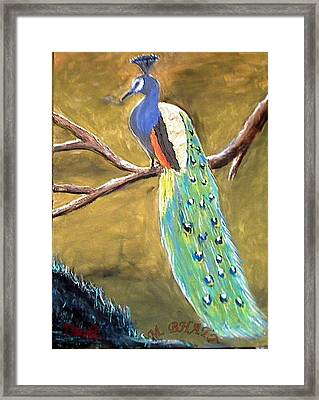 The Peacock-2 Framed Print by M bhatt